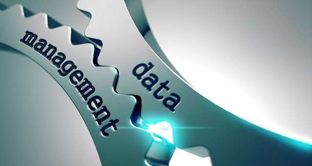 crm and data management